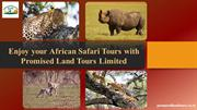 Enjoy your African Safari Tours with Promised Land Tours Limited