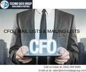 CFO Email Lists & Mailing Lists | Chief Executive Officer Email List