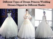 Different Types of Dream Princess Wedding Dresses Dipped in Different