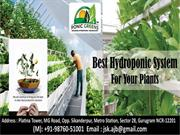 Hydroponic in India ponicgreens Hydroponics in India