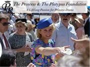 Welcome to The Princess and the Platypus Foundation