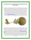Saw Palmetto Extract Supplier Brings the Best Plant Based Extracts for