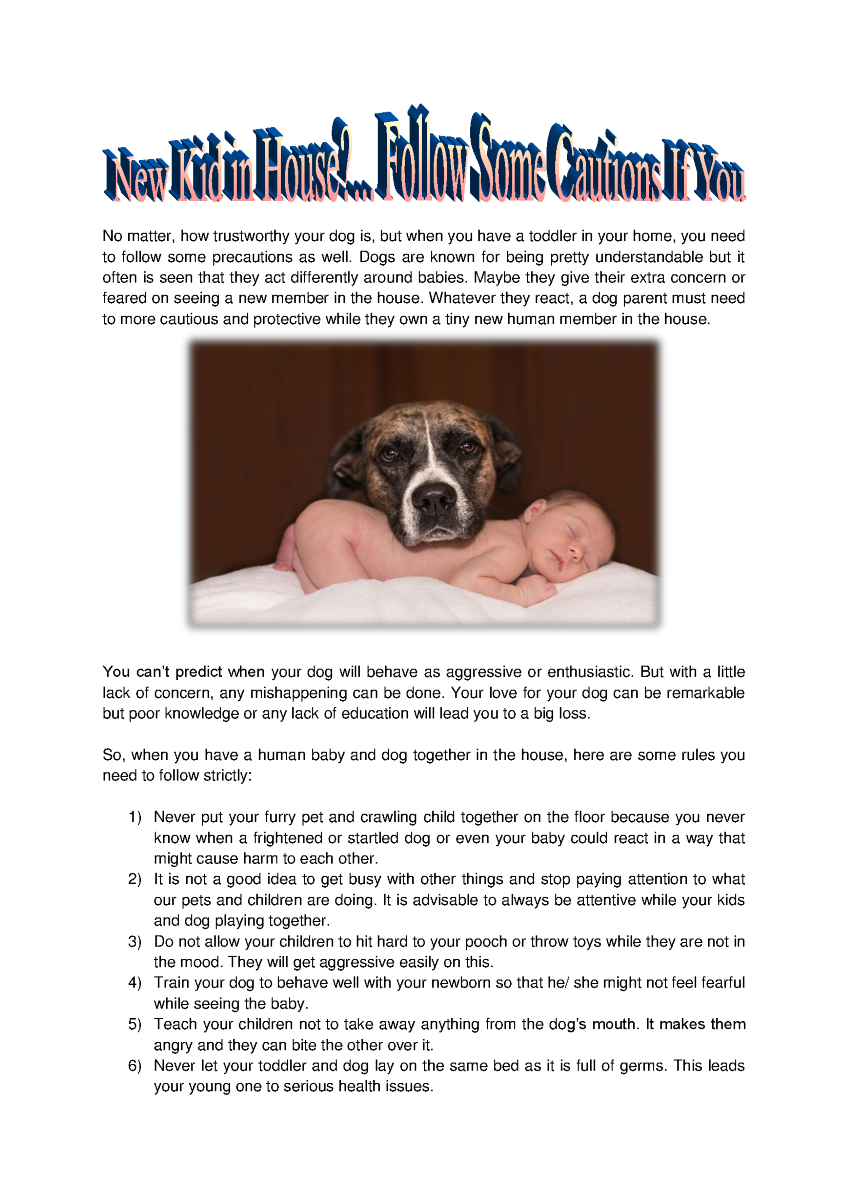 Precautions While Having Pet And Baby Together Authorstream