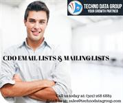CDO Email Lists & Mailing Lists | Chief Data Officer Email Listsin USA