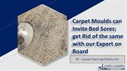 Carpet Moulds can Invite Bed Sores; get Rid of the same with our Exper