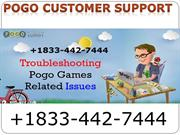 Pogo Toll-Free Number
