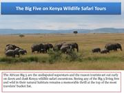 See The Big Five on Kenya Wildlife Safari Tours-converted