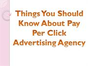 Things You Should Know About Pay Per Click Advertising Agency