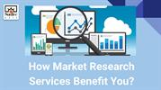 Market Research Services for Business
