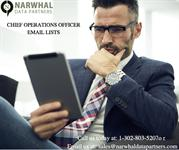 CHIEF OPERATIONS OFFICER EMAIL LISTS