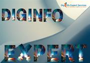 Diginfo Expert - The Ultimate Digital Marketing Solutions India