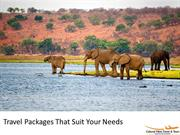 Travel Packages That Suit Your Needs