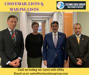 CISO Email List & Mailing List