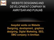 Website Designing and Development Company in Amritsar and punjab