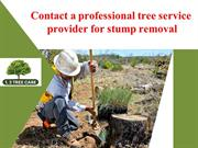 Contactaprofessionaltreeserviceproviderforstumpremoval
