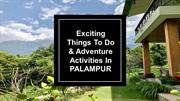 Activities in Palampur - Norwood Green