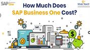 What is the Cost of SAP Business One