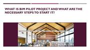 What is BIM Pilot Project and what are the steps to start it?