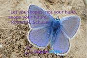 Lupus Hope - Love Heals