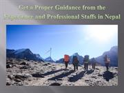 Get a Proper Guidance from the Experience and Professional Staffs in N
