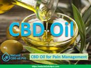 Natural CBD Oil Pro - CBD Oil for Pain Management