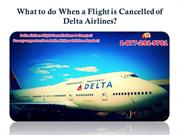 What to do When a Flight is Cancelled of Delta Airlines