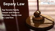 Child Protection Lawyer in Toronto - Separy Law