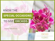 Leading Flower Shop in Berkeley - Orchid Florist