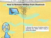 How to Remove Mold & Mildew from Sheetrock