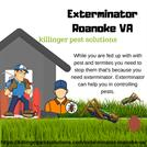 Exterminator Roanoke VA - Killinger Pest Solutions