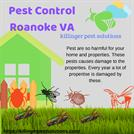 Pest Control Roanoke VA - Killinger Pest Solutions