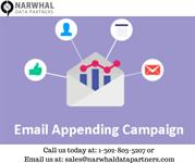 Email Appending Services | Narwhal Data Partners