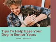 Peter J Salzano: Tips To Help Ease Your Dog In Senior Years