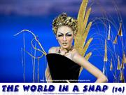 The World in a SNAP  (14)