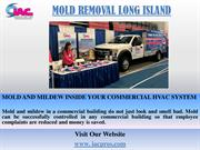 Mold Removal Long Island