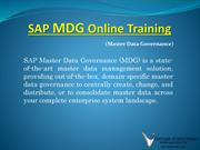 SAP Master Data Governance PDF