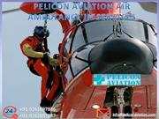 Book Cheapest Air Ambulance Service from Patna to Delhi by Pelicon Avi