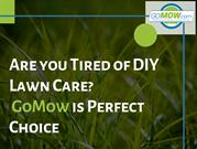 Tired of DIY Lawn Care? GoMow Lawn Care Austin is Perfect Choice.