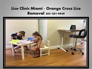 Lice Treatment Miami