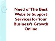 Need of The Best Website Support Services for Your Business's Growth O