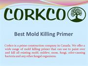 Best Mold Killing Primer In Cananda
