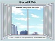 How to Remove Toxic Mold from Home at Raleigh, Cary NC