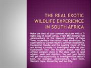 The Real Exotic Wildlife Experience In South Africa