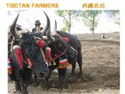 TIBETAN FARMERS