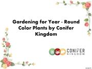 Gardening for Year - Round Color Plants by Conifer Kingdom