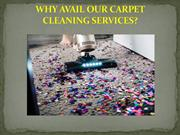 WHY AVAIL OUR CARPET CLEANING SERVICES