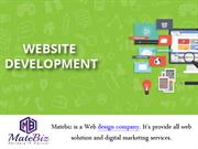 Good Web Development Company In India Is Matebiz