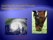 Hurricane Preparedness for your Horses