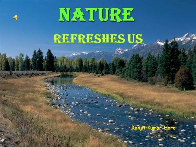 depletion of natural resources essay