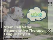 Are you Looking for veterinary services in League City
